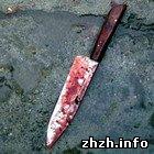 В Житомире мужчина жестоко убил своего знакомого и его дочь. Девочку пытал. ФОТО