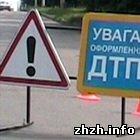 Происшествия: На трассе Бердичев-Житомир фура разорвала на части телегу. Погибла лошадь. ФОТО