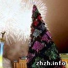 Культура: Новогодняя ёлка из Житомира обойдется Киеву в 1,2 миллиона
