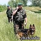 Житомирские пограничники показали что они сделают с нарушителями границы. ВИДЕО