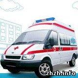 Происшествия: ЧП. В Житомире госпитализированы 47 школьников из-за отравления неизвестным газом. ФОТО