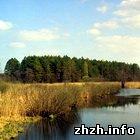 Общество: В Житомирской области создадут природный заповедник