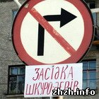 Общество: В Житомире неизвестный публично предупредил водителей о