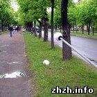 Криминал: В Бердичеве ночью вандалы разгромили городской бульвар. ФОТО