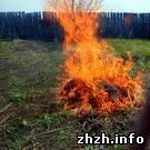Происшествия: Житомирские экологи штрафуют дачников, которые сжигают мусор на огородах