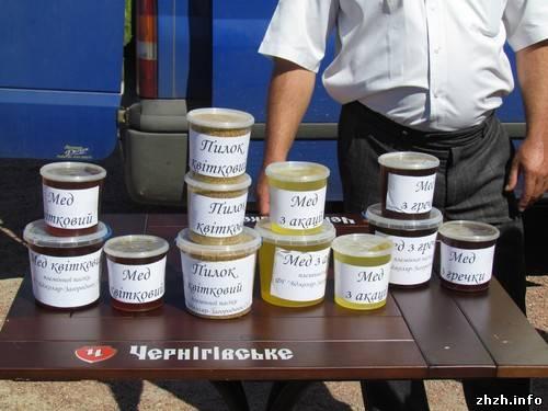 Полезные свойства пчелиного прополиса
