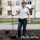 Житомир: Во время весеннего благоустройства в Житомире высажено около двух тысяч деревьев