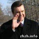 Политика: Отрыв Януковича от Тимошенко составляет почти 15%