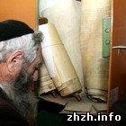 Культура: На старом еврейском кладбище в Житомире похоронили 221 свиток Торы. ФОТО
