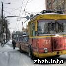 В Житомире неуправляемый троллейбус раздавил собственного водителя