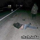 Происшествия: В Житомире маршрутка сбила 46-летнюю пьяную женщину