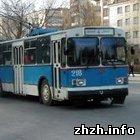 Экономика: Предприятие Житомиртранспорт оштрафовано на 20 тыс. грн.
