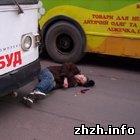 В Житомире пешеходы-мошенники бросаются под машины водителей