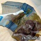 Экономика: Падение гривны: В обменниках Житомира доллар продают по 9 грн