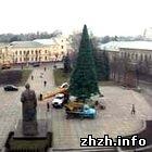 Сегодня состоится церемония открытия главной елки Житомира. ФОТО