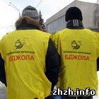Общество: В Житомире презентована новая общественная организация «Бджола». ФОТО