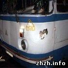 Рейсовый автобус сбил 15-летнюю девочку. ФОТО