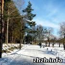 Житомирскому гидропарку нужны 400 тысяч гривен - Елена Сарно
