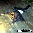 Происшествия: Водитель Хонды сбил пьяного пешехода и врезался в Ладу