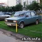 Житомир: В Житомире за парковку на газонах водителей будут штрафовать на 1700 грн.