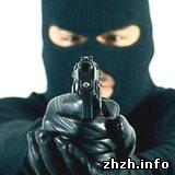 Криминал: В Житомире совершено нападение на депутата-бютовца Владимира Семенистого