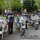 Житомир: Ежедневно общественный порядок в Житомире охраняет 60 нарядов милиции