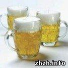 Культура: В Житомире намерены установить рекорд по скорости выпивания пива