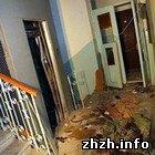 Криминал: Подробности взрыва в Киеве: в лифте подорвали житомирского депутата. ФОТО