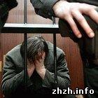 Криминал: Банда совершившая более 50 преступлений в Житомире попала под суд