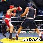 На Житомирщині проходить міжнародний турнір з боксу