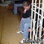 Криминал: Житомирский подросток украл у своего отца 13 тыс. гривен