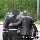 Житомир: Житомирские инспекторы ГАИ