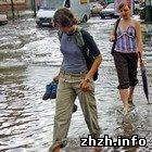Наука: Погода на выходные: в Житомире грозовые дожди