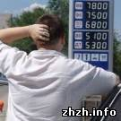 Житомирские водители: подорожание бензина вызвано сговором нефтетрейдеров