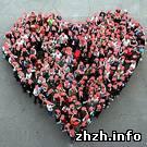 23 мая в Житомире пройдет всеукраинская благотворительная акция «Серце до серця»