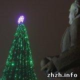 Впервые за тысячу лет в Житомире установили искусственную ёлку. ФОТО
