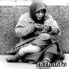 Общество: В Житомире планируют бесплатно раздавать горячие обеды бездомным