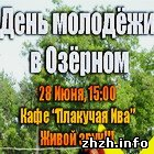 В День Молодежи под Житомиром состоится концерт под открытым небом