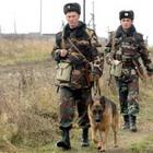 Происшествия: Житомирские пограничники расстреляли контрабандистский ЗИЛ